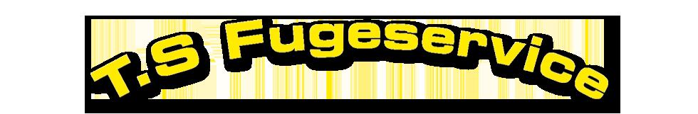 T.S. Fugeservice